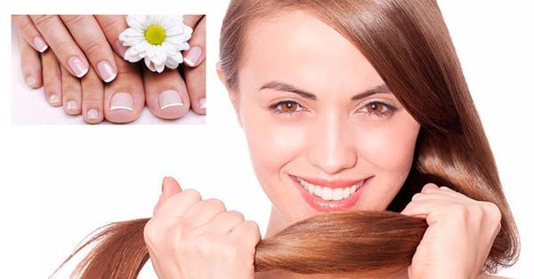 La máscara para los cabellos con la queratina kallos cosmetics keratin